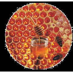 Dangtelis 66 medus